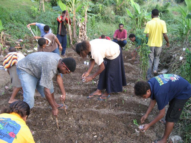 PSA tutors planting corn